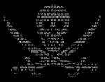 hackers-crossbones