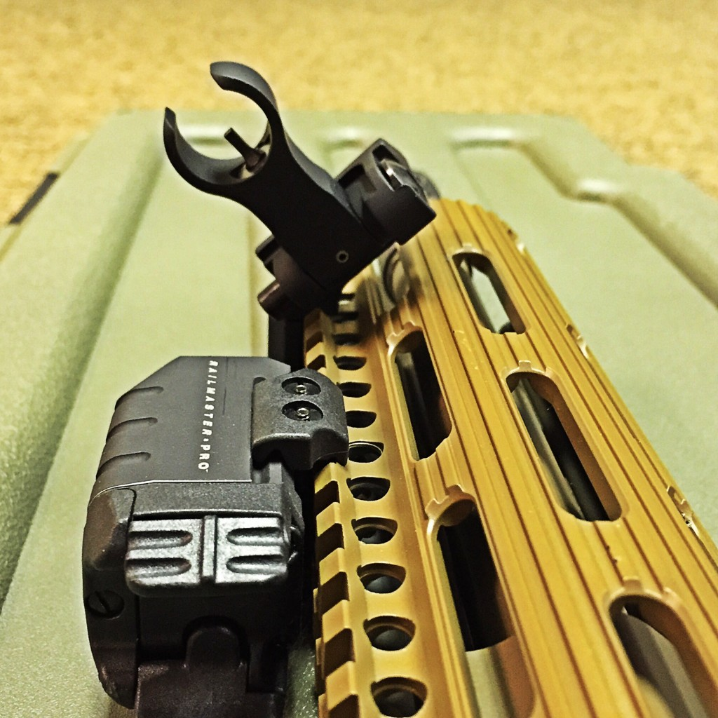 Front sight detail