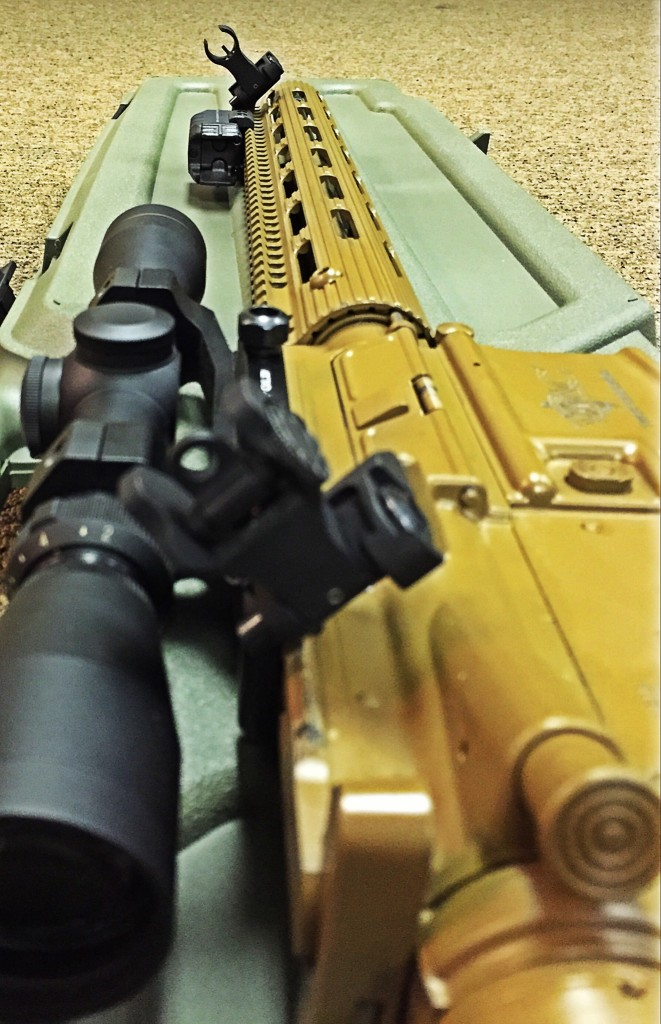 Front sight in focus
