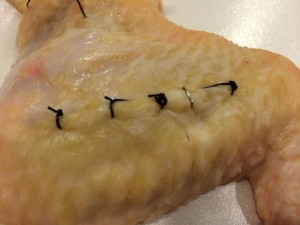 Not bad for my first use of sutures...and a staple thrown in just for the experience.