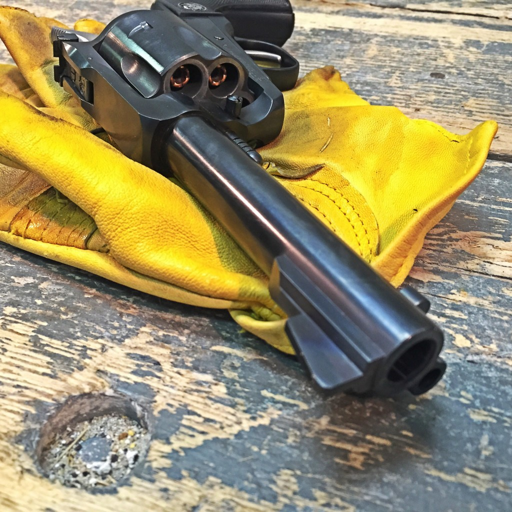 Ruger Blackhawk with Winchester PDX